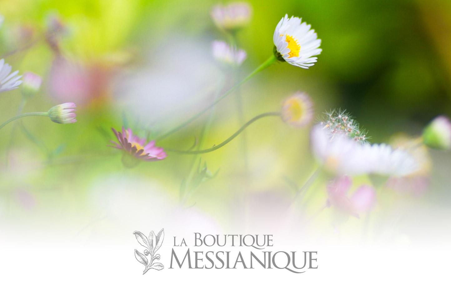 sublime-digital_boutique-messianique-logo-header