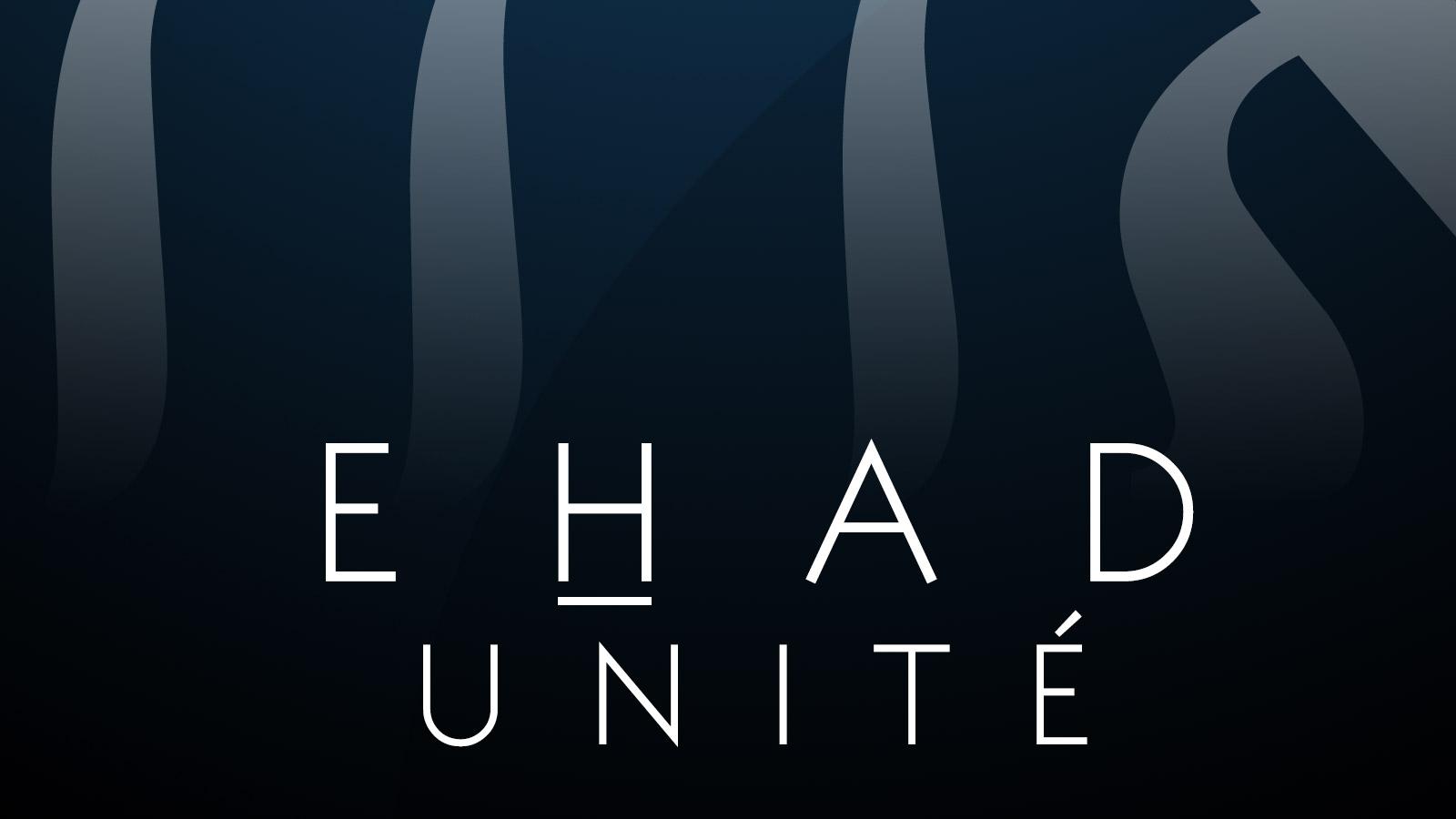 sublime-digital_ehad-unite-book-cover-04